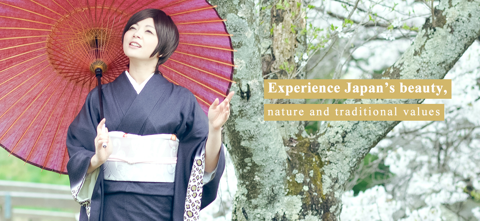 Japan is full of beautiful natural scenery and traditional culture.